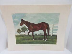 SIGNED NUMBERED JOHN RUTHVEN LTD EDITION PRINT BARDSTOWN OF CALUMET FARM HORSE