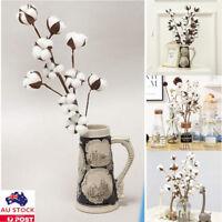 Naturally Dried Cotton Stems Farmhouse Artificial Flower Filler Floral Decor as