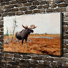 Wilderness Moose Animal Paintings HD Print on Canvas Home Decor Wall Art Picture
