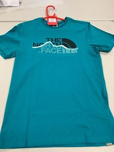 The North Face Mountain Line TEE Mens (new)