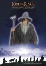 Herr der Ringe Poster Fellowship - Lord of the Rings Filmplakat - 68,5 x 98 cm