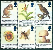 1998 Endangered species,Dormouse,Lady's slipper Orchid,Mushroom,Mole,GB,UK,MNH