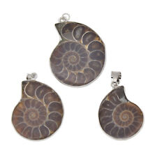 Natural Fossil Shell Charm Pendant Necklace Jewelry Making Craft Gifts Ammonite