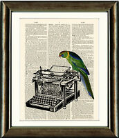 Old Book page Art Print - Parrot and Typewriter Vintage Dictionary Page Wall Art