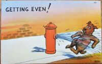 Dog, Fire Hydrant 'Getting Even' by Spraying Water 1940s Linen Postcard