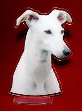 statuette photosculptée 10x15 cm chien levrier espagnol 1 dog hund perro cane