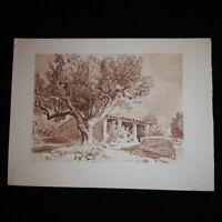 Gravure de Maurice de Lambert: La maison du cultivateur à Sanary