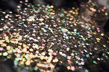 Esclusivo Bizzy Unghie Cosmetici Grade Glitter Nail Art Star LUCERNA Acrilico/Gel