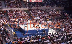 WWF Wrestler SPORTS ARENA - 35mm Wrestling Slide
