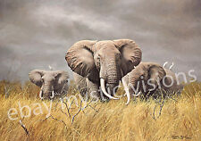 POWER OF THE SERENGETI Charles Frace CANVAS Signed & Numbered w/coa Elephant Art