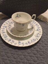 Royal Albert Memory Lane TRIO Teacup / Saucer / Plate *MADE IN ENGLAND*