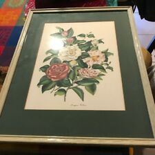 VTG Eugene Arthur Glass Framed Print- BLOSSOMS & BUDS? Beautiful Floral Bunch