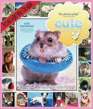5 NEW Cute Overload 2012 Calendar: 365 Days of Impossibly Cute NEW ANIMALS PETS