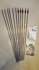 EASTON ACE 1206 H SERIES 920 ARROWS With XS Wings