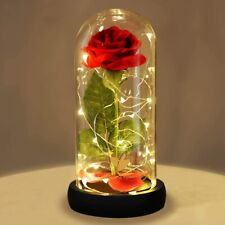 Beauty and the Beast Rose Kit Red Silk Rose with LED Light Best Gift forBirthday