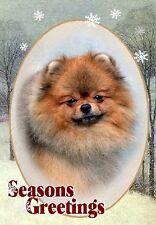 Pomeranian Dog A6 Christmas Card Design XPOM-7 by paws2print