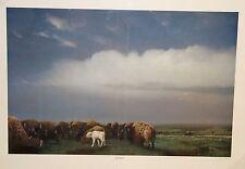 Bill Jaxon For Unto Us Limited Edition Buffalo Print With White Buffalo NEW