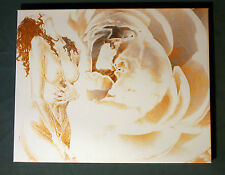 Roses ~ Limited Ed Fine Art ~ 16 x 20 Canvas Print ~Classically Inspired Fantasy