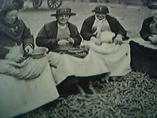 ephemera 1929 picture mary queen of the pea shellers covent garden