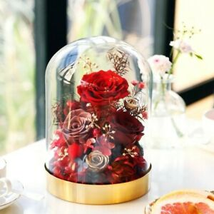 Real Preserved Roses In Glass Dome + Gift Box Lasting time 1-3years