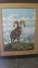 ROCKY MOUNTAIN BIG HORN SHEEP FRAMED PRINT by RAY HARM, FROM 1976, LTD. EDITION