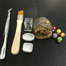 Toolkit With Water Food Feeder Tweezers And Ant Farms Housing Decoration Set New