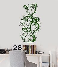 Vinyl Wall Decal Cactus Plant Flower Nature Mexico Stickers (923ig)