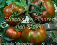 🔥 🍅 BLACK ZEBRA rund Tomate schwarz 10 frische Samen Balkon Kübel Tomaten