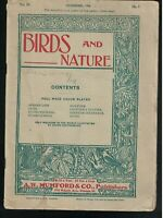 Birds and Nature Magazine Lot of 4 1900s Color Prints African Lion Skunk Vulture