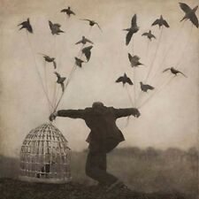 THE GLOAMING 2 CD NEW