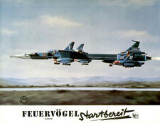 Feuervögel Startbereit ORIGINAL Aushangfoto von 1967 David Lane KULT ANNIMATION