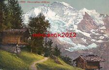 AK, Grafik, Gipfel Jungfrau - Panorama, ca 1920; 5026-91