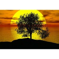 5D DIY Full Drill Diamond Painting Sunset Cross Stitch Kits Home Decor Art Gift