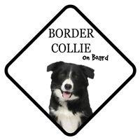 Border Collie a Bordo Coche Señal con Ventosa Perro Pegatinas