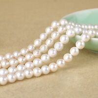 8mm Genuine Natural White South Sea Shell Pearl Round Loose Beads 15'' AAA