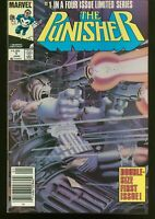 THE PUNISHER #  1 - 5 COMPLETE LIMITED MINI SERIES ALL NEWSSTAND ISSUES INV: L-8
