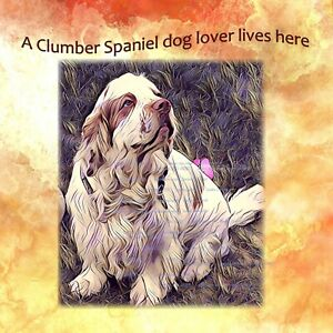 CLUMBER SPANIEL DOG NEW HARDBOARD PLAQUE TILE DESIGN SANDRA COEN ART PRINT