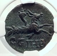 SEVERUS ALEXANDER 222AD Parium Parion Mysia Ancient Roman Coin CAPRICORN i77404