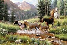 MOUNTAIN THUNDER by Mark Keathley SOLD OUT ITEM