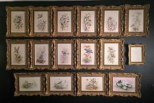 """ROYAL WORCESTER """"BRITISH BIRD PAINTINGS ON BONE CHINA"""" SET OF 15 FRAMED PLAQUES"""