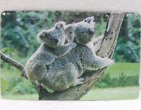 SCHEDE TELEFONICHE GIAPPONE 1-animali della foresta-koala c/cucciolo - NTT