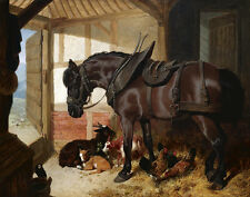 Herring Frederick John Sr A Bay Carthorse In A Stable With Goats #5356