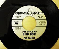 WHO STOLE MY BIRD DOG - THE OZARKS - ORIGINAL VINYL SINGLE - PROMO PRESS - RARE