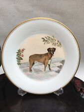 More details for vintage plate royal doulton blank plate with hand painted boxer dog signed