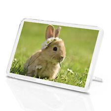 Baby Bunny Classic Fridge Magnet - Rabbit Daisy Flower Bunnies Gift #15575