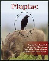 Liberia 2019 MNH Piapiac Piapiacs 1v S/S Wild Animals Birds Stamps