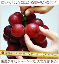New ! -Top 10 Rare luxury grapes- Authentic Ruby Roman grapes 5 stratified seeds