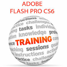 Adobe Flash Professionale CS6-Video formazione tutorial DVD