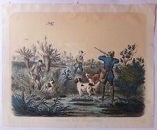 Chasse aux bécasses lithographie XIXème siècle