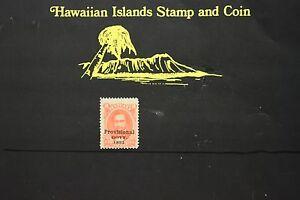 201 HAWAII PROVISONAL GOVT.  SCOTT # 65  UNUSED